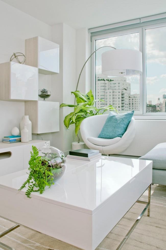 Яркий и стильный жилец в вашем доме