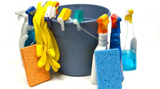 Как избавиться от мух в доме. Соблюдение чистоты в доме - залог того, что у вас не будет проблем с насекомыми и другими паразитами в доме
