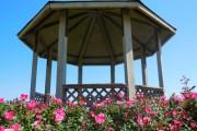 Фото 15 Красивые и простые садовые беседки: 70 фото