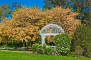 Фото 3 Красивые и простые садовые беседки: 70 фото