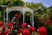 Фото 8 Красивые и простые садовые беседки: избранные идеи дизайна и проверенные варианты