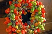 Фото 15 55+ фото Физалис — выращивание и грамотный уход