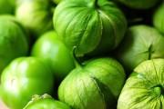 Фото 3 55+ фото Физалис — выращивание и грамотный уход