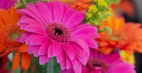 Искусственные цветы для домашнего интерьера: как эффектно украсить жилище фото