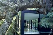 Фото 9 Black Forest House: парящий посреди леса