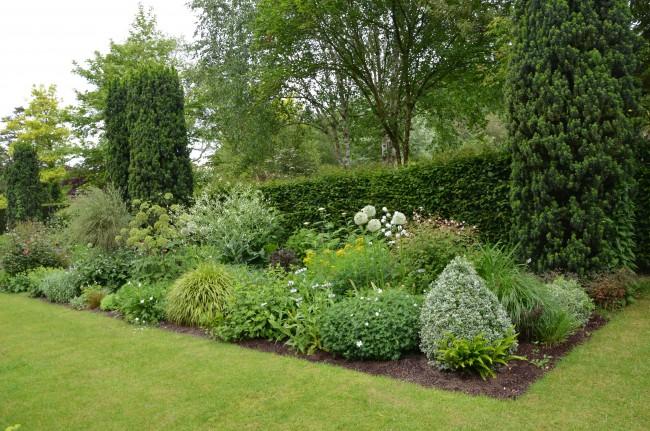 Хвойные растения отлично сочетаются с лиственными растениями и цветами