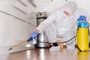 Фото 7 Как избавиться от тараканов в квартире навсегда: эффективные способы