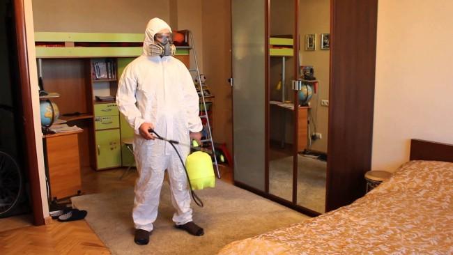 Препараты для уничтожения тараканов, требующие распыления из баллонов, в большинстве своём легко распадаются на воздухе, и потому уже спустя несколько часов после использования не причинят вреда человеку или домашним животным