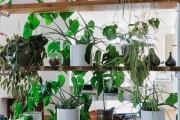 Фото 33 Стеллажи для дома без задней стенки: расширяем границы пространства