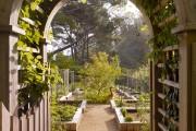 Фото 7 70+ идей грядок на даче: красивые, «умные», «ленивые» – всё, что нужно знать огороднику!