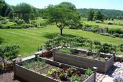 Фото 16 70+ идей грядок на даче: красивые, «умные», «ленивые» – всё, что нужно знать огороднику!
