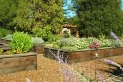 Фото 24 70+ идей грядок на даче: красивые, «умные», «ленивые» – всё, что нужно знать огороднику!