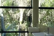 Фото 5 Black Forest House: парящий посреди леса