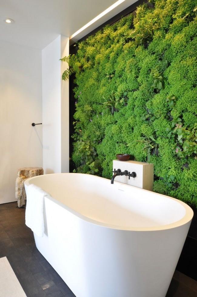 Живая стена из различных влаголюбивых растений в ванной комнате