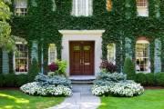 Фото 7 55 фото бальзамина: уход в саду и в домашних условиях