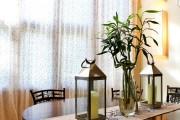 Фото 12 Комнатное растение бамбук (48 фото): уход и размножение