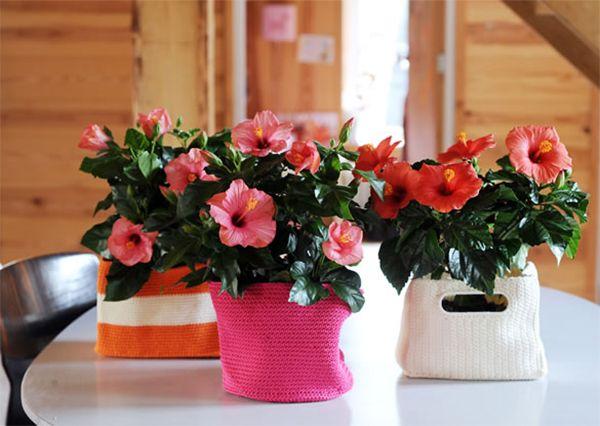 Как сделать цветок домашний 649