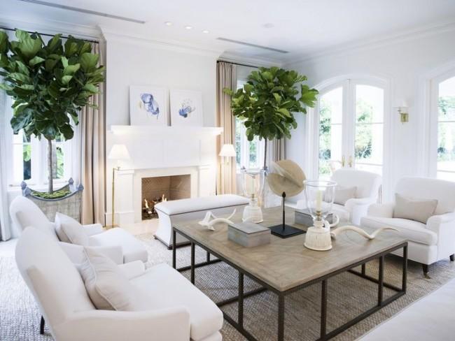 Живые растения, как декор в белой гостиной