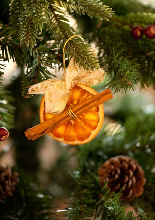 Оригинальные украшения из корицы и сушеных апельсинов - как лакомство для хозяйки года