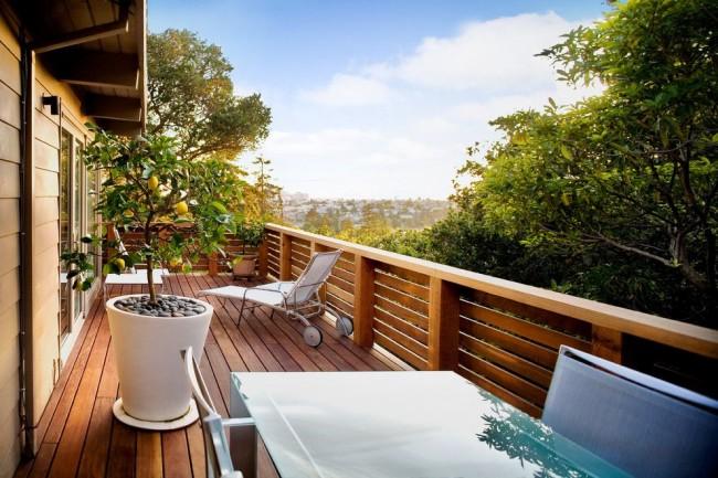 Комнатный лимон, как элемент декора красивого балкона