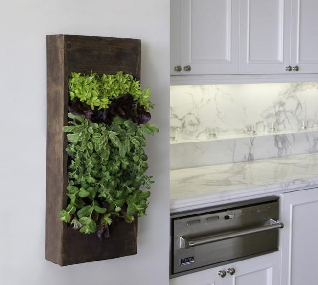Если подоконник заняла обеденная зона, то на подвесных настенных панелях можно выращивать пряности и душистые травы, сочетая практичную цель с декоративным озеленением кухнии