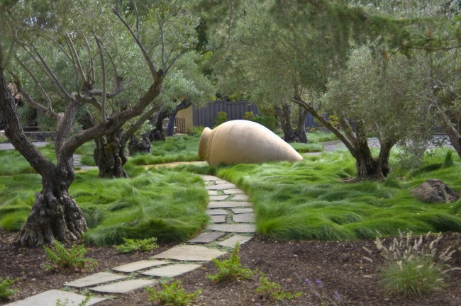 Один из самых популярных сортов газонной травы - овсяница красная