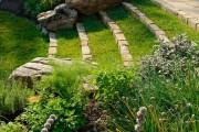 Фото 2 50 идей газона своими руками: как и когда сеять газонную траву