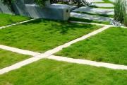 Фото 4 50 идей газона своими руками: как и когда сеять газонную траву