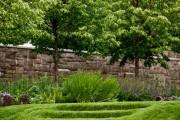 Фото 3 50 идей газона своими руками: как и когда сеять газонную траву