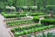 Фото 6 70+ идей грядок на даче: красивые, «умные», «ленивые» – всё, что нужно знать огороднику!