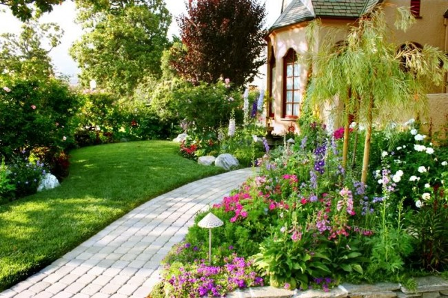 Яркие краски сада помогут поднять настроение при любой погоде