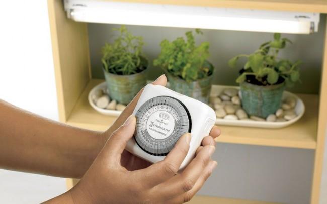 Подключение таймера к электрической цепи поможет соблюдать «биологические часы» растений