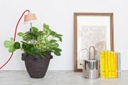 Фото 10 Лампы для растений: 45 фото типов и советы, как выбрать подходящую