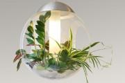 Фото 4 Лампы для растений: 45 фото типов и советы, как выбрать подходящую