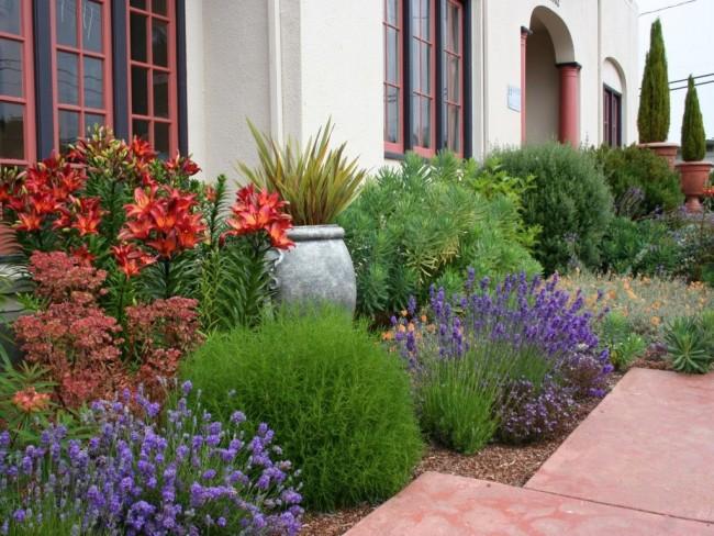 Сад под окном в средиземноморском стиле
