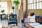 Фото 10 Вьющиеся комнатные растения: великолепная семерка
