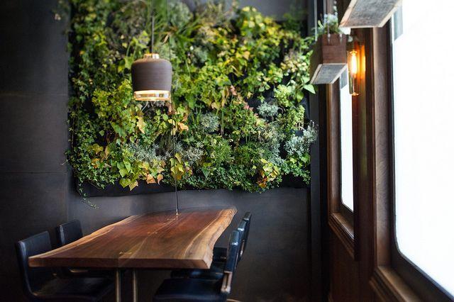 Живая стена из вьющихся растений в черно-белом интерьере