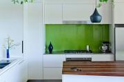 Фото 16 Вьющиеся комнатные растения: великолепная семерка