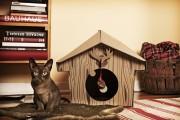 Фото 3 Делаем дом для кошки своими руками: выбор материалов и пошаговые мастер-классы