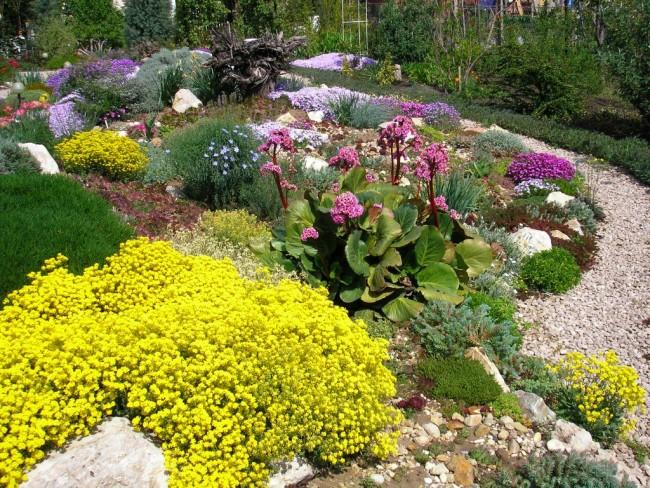 Красивый и цветущий сад – мечта любого владельца загородного участка