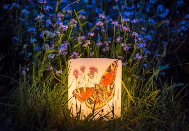 Летняя идея для декора свечи: изображение бабочки Павлиний глаз