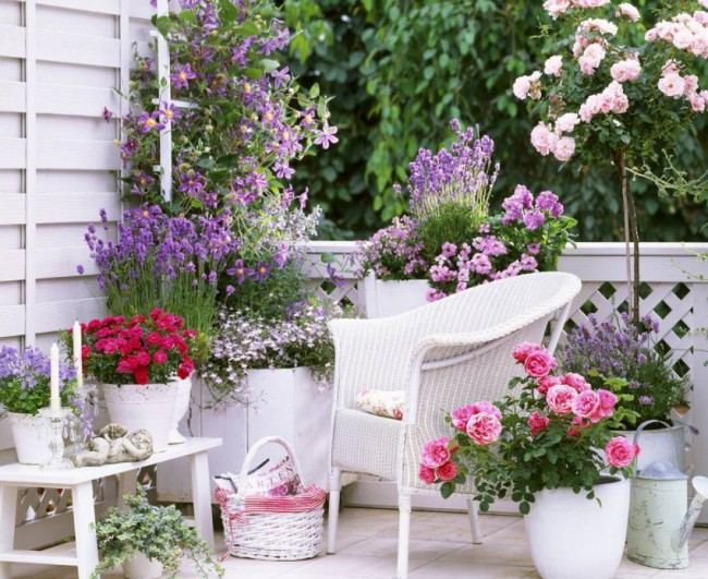 Розы прекрасно сочетаются и с другими цветами