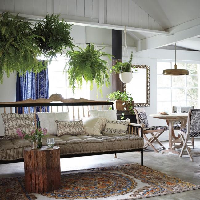 Декоративные папоротники в дизайне гостиной. С ними следует быть осторожными аллергикам