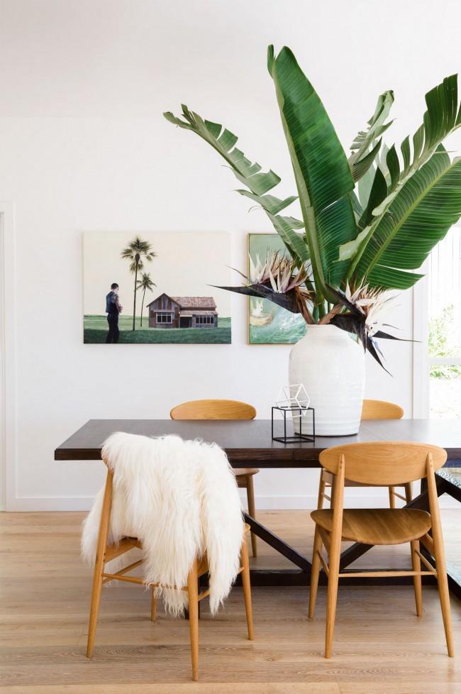 Прекрасная пальма в современном интерьере. О ней есть странноватые и любопытные поверья