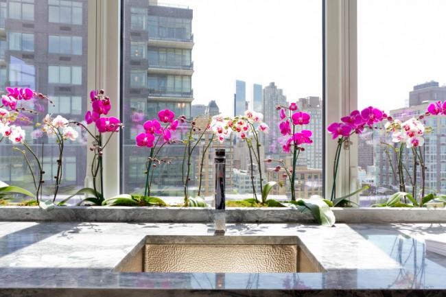 Популярные для домашнего выращивания виды орхидей ничем особо не опасны. Они могут разве что вызывать головную боль у людей, чувствительным к запахам