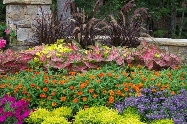 Послойное расположение растений в саду