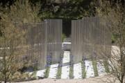 Фото 10 Многолетние растения (70 фото): Все лучшие сорта и идеи для роскошного сада