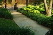 Фото 9 Многолетние растения (70 фото): Все лучшие сорта и идеи для роскошного сада