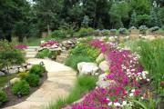Фото 21 Осенние цветы в саду (65 фото с названиями): как превратить ваш сад в райский уголок