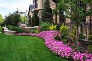 Фото 14 Осенние цветы в саду (65 фото с названиями): как превратить ваш сад в райский уголок